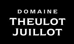 Theulot Juillot Logo